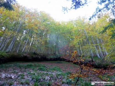 Selva Irati-Pirineo Navarro-Puente del Pilar;rutas a pie granja de san ildefonso segovia senderista